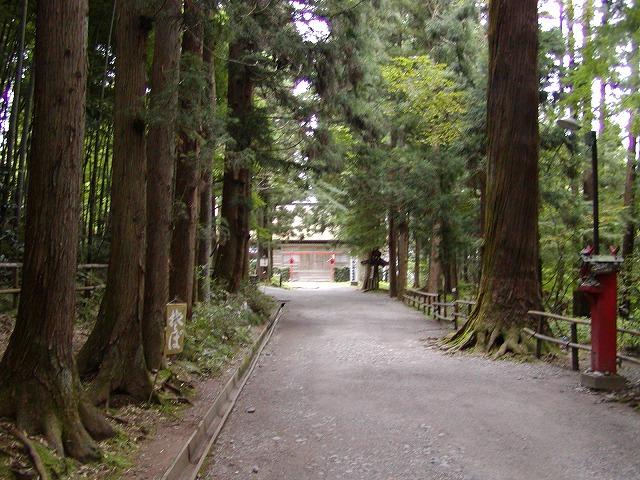 中尊寺の画像 p1_14